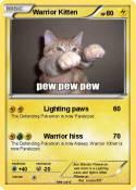 Warrior Kitten
