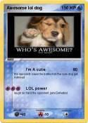 Awesome lol dog