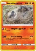 kawaii hedgehog