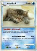 kitten lord
