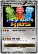 the skylander