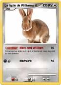 Le lapin de