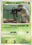 marmote de