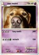 max hound