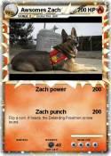 Awsomes Zach