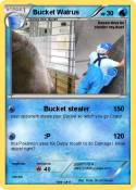 Bucket Walrus