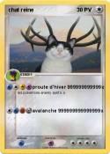 chat reine