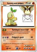 Turtwig and