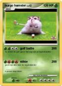 burgo hamster