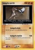 kung-fu cat EX