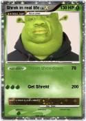Shrek in real