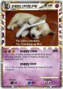 puppy candy pop