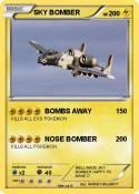 SKY BOMBER