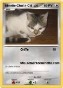 Minette-Chatte-Cat