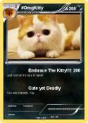 #OmgKitty