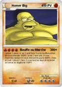 Homer Big 4