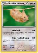 Acrobat hamster
