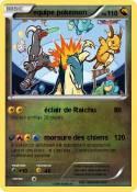 equipe pokemon