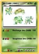 les CHIBI ( GNG