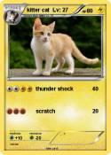 kitter cat Lv: