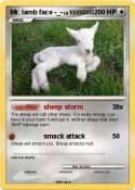 Mr. lamb face