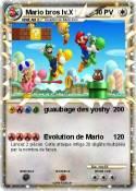 Mario bros lv.X