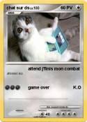 chat sur ds