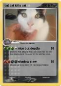 cat cat kitty