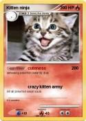 Kitten ninja