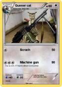 Gunner cat