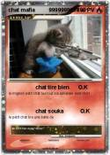 chat mafia