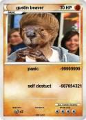 gustin beaver