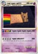 real nyan cat!!