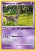 wolf-schnauzer
