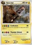 Talon Owl