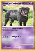 mastiff-griffon