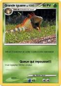 Grande iguane