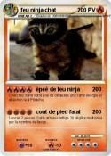 feu ninja chat