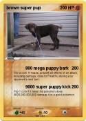brown super pup