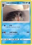sad cowboy cat
