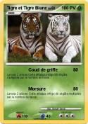 Tigre et Tigre