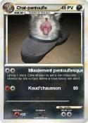 Chat-pantoufle
