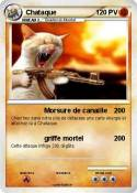 Chataque