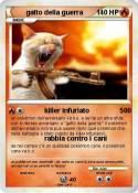 gatto della