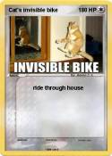 Cat's invisible