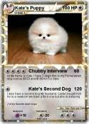 Kate's Puppy