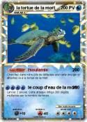 la tortue de la