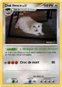 Chat féroce