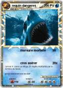 requin dangeres