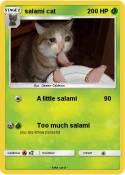 salami cat
